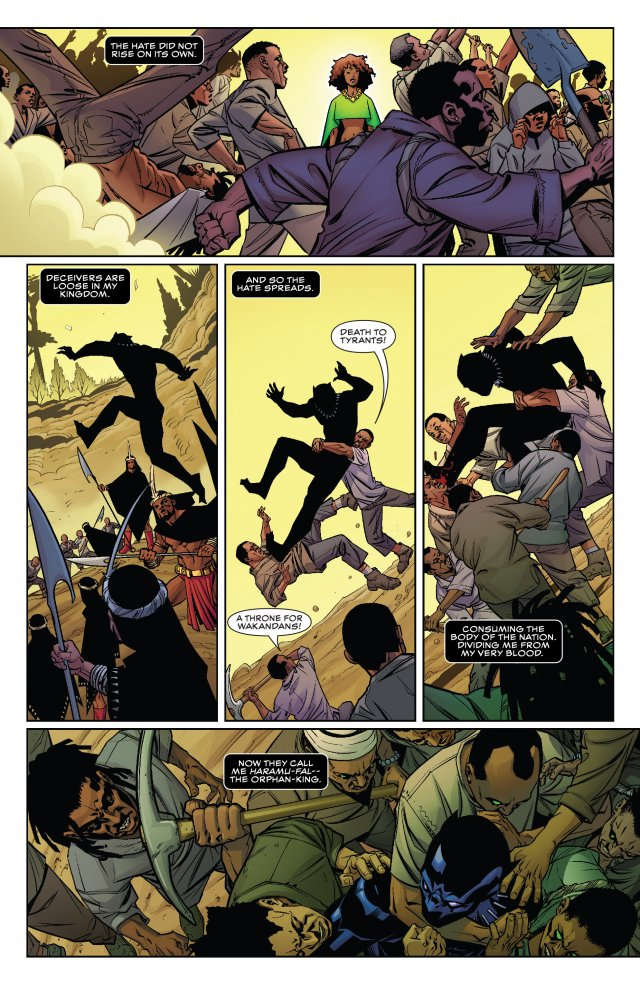 Black panther series from ta nehisi coates and brian photo 1