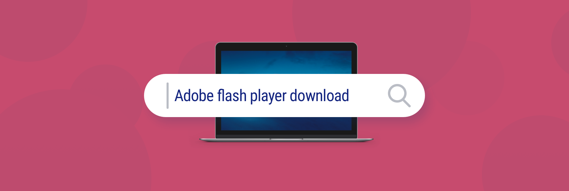 Adobe flash player download free videos watch download